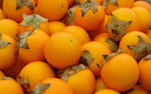 میوه نارنجیلا